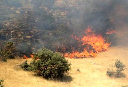 اقدامات پیشگیرانه برای جلوگیری از حریق در عرصههای طبیعی استان سمنان