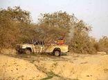 16 هکتار از مراتع جنوب سیستان و بلوچستان برای مبارزه با ملخ صحرایی سم پاشی شد