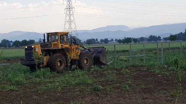 ۳ هکتار از اراضی کشاورزی البرز آزادسازی شد 