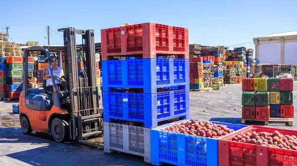 صدور 2943 هزار تن محصولات کشاورزی در 5 ماه نخست سال