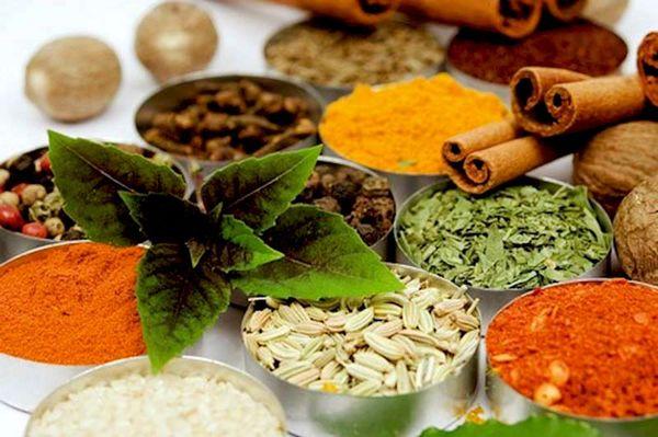 بزرگترین مجتمع فرآوری گیاهان دارویی کشور راهاندازی میشود