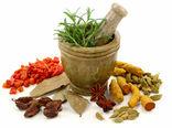 افزایش اشتغال با توسعه کاشت گیاهان دارویی در بوشهر