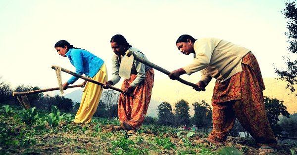 توانمندسازی کشاورزان هندی کلید خورد