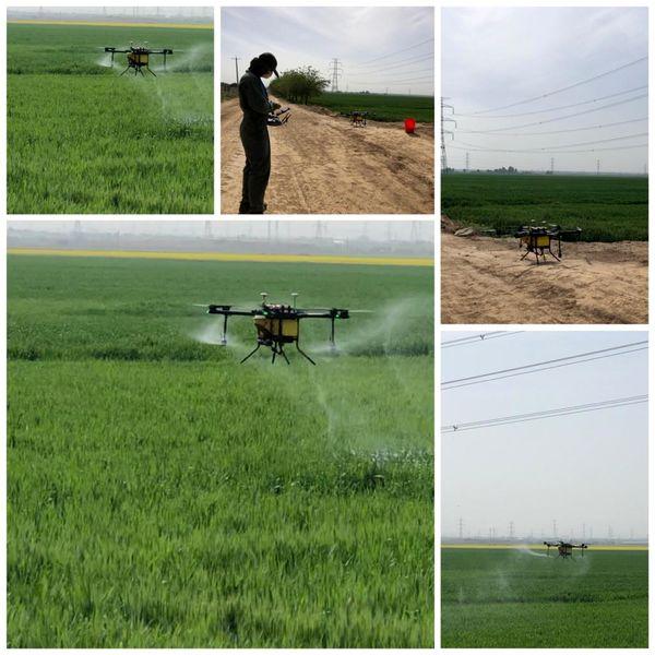 950 هکتار از مزارع کشاورزی در شهرستان نظرآباد با پهپاد سم پاشی شد
