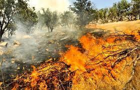 عرصههای درگیر آتش در خراسان شمالی کمتر از ۳ هکتار است