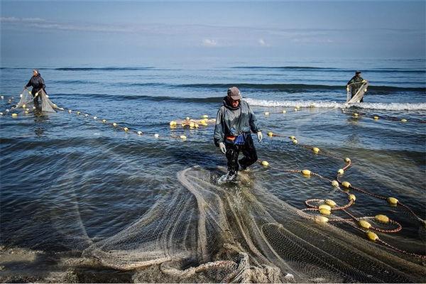 ممنوعیت صید ماهی حلوا سفید در آبهای خوزستان