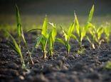 توسعه محصولات کشاورزی و لبنی دارای گواهی «GAP» در اصفهان