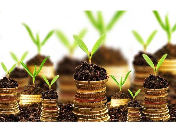 پرداخت 123 میلیارد تومان تسهیلات کشاورزی در ساری