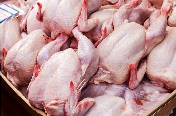 انعقاد قرارداد برای خرید 250 تن گوشت مرغ منجمد با تشکلهای خراسان شمالی