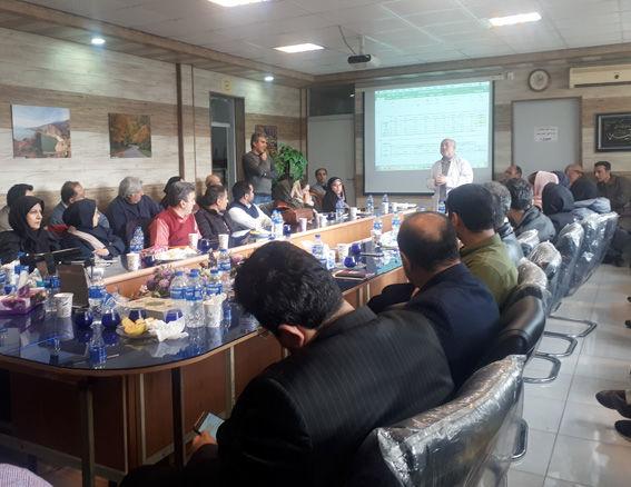 برگزاری سومین دوره ارزیابی حسی روغن زیتون در شهرستان رودبار