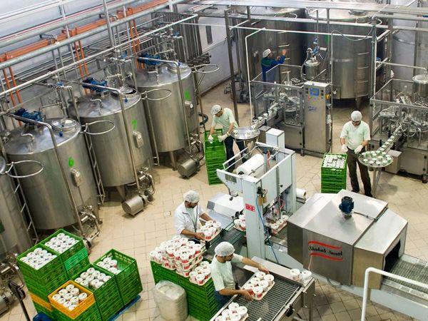 دغدغهام تولید مواد غذایی سالم برای مردم بود