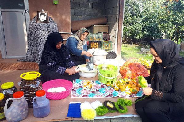 ۲۲ صندوق خرد زنان کردستان تسهیلات قرضالحسنه دریافت کردند