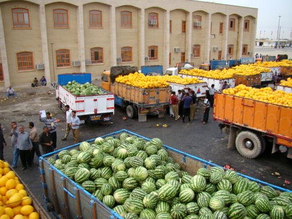 رشد ۳۰درصدی صادرات محصولات کشاورزی