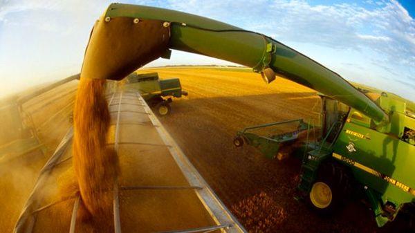 سیاست های غذایی و کشاورزی باید بازنگری شوند/دو سوم حیات وحش تا آخر این دهه از بین می روند