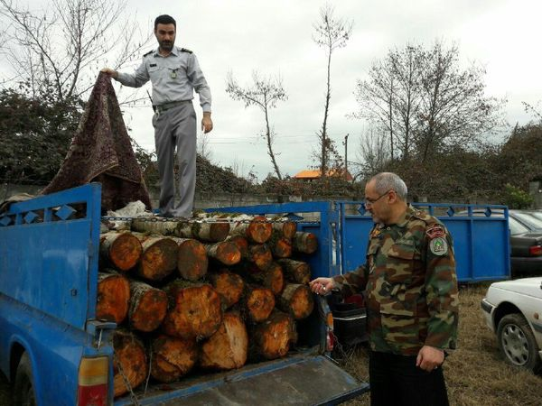 مقابله با قاچاقچیان چوب در هفتکل
