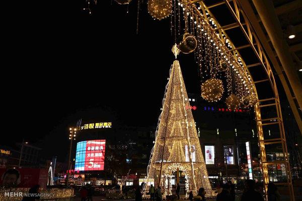 درختهای کریسمس در نقاط مختلف جهان