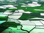 اجرای کاداستر اراضی کشاورزی و رفع تداخلات اراضی ملی و مستثنیات اولویت اصلی جهاد کشاورزی