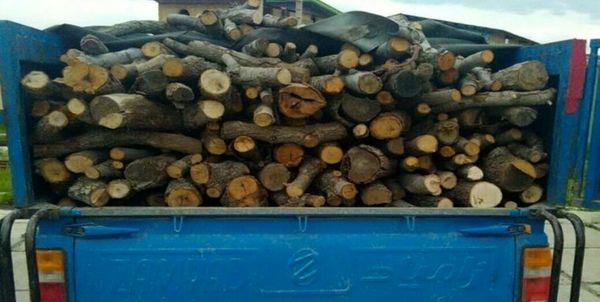 کشف و ضبط ۶۰۰ کیلوگرم چوب جنگلی قاچاق در لردگان