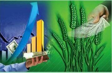اهمیت بازاریابی محصولات کشاورزی
