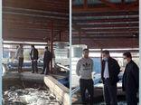 اولین پروانه عرضه زنده فروشی ماهی قزل آلا در سطح استان در شهرستان سراب