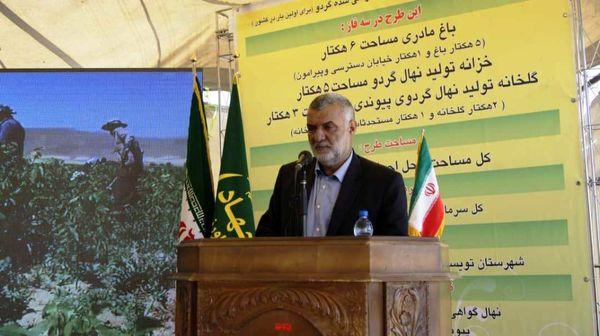 دستیابی ایران به تکنولوژی تولید کشت بافت نهال گردو