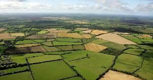 کاهش دغدغه کشاورز و بازار با اجرای طرح الگوی کشت و کشاورزی قراردادی