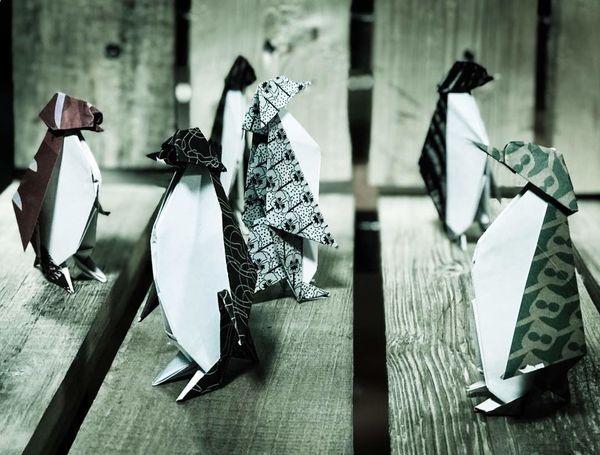 «مرگ و پنگوئن» به روایت پیام دهکردی در تئاترشهر