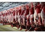 تولید سالانه 6500 تن گوشت قرمز در ساری