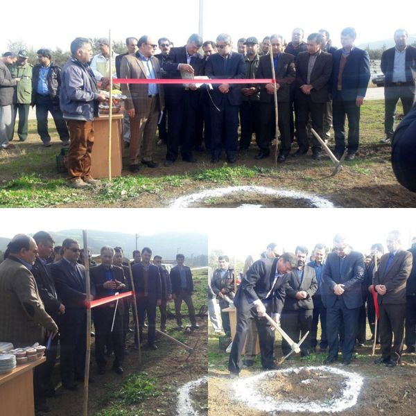 راهاندازی اولین شهرک فرآوری گیاهان دارویی در استان گلستان