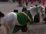 «اسب سفید سرزمین من»  به شبکه مستند می آید