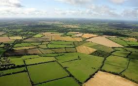 تاکنون ۱۹۸ هزار مورد تغییر کاربری در اراضی کشاورزی انجام شده است