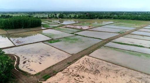 ۲۴۰۰ مترمکعب صرفهجویی آب در هر هکتار با اجرای طرح تجهیز و نوسازی اراضی کشاورزی