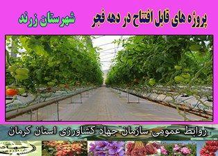 بهرهبرداری از 3 طرح کشاورزی در شهرستان زرند