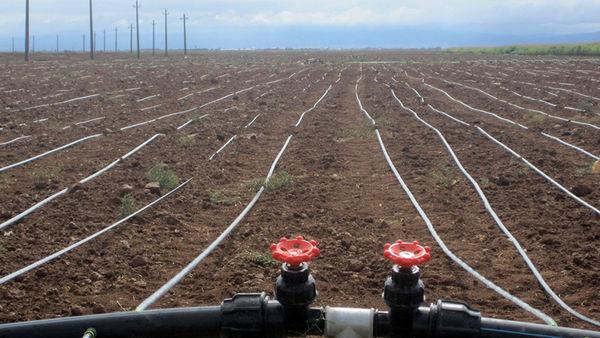 اجرای 182 هکتار سامانه نوین آبیاری در اراضی کشاورزی شهرستان آوج