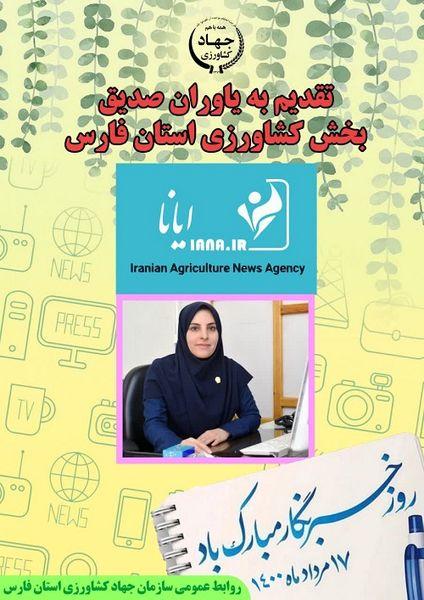 تجلیل از خبرنگار ایانا در استان فارس