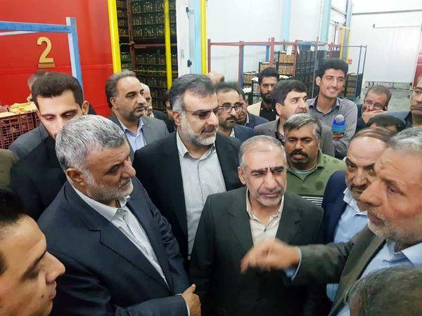 وزیر جهاد کشاورزی از یک واحد سردخانه در شهرستان سپیدان بازدید کرد