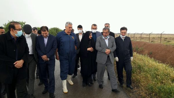 استاندار قزوین از واحد کشت و صنعت سیمرغ در شهرستان بوئین زهرا بازدید کرد