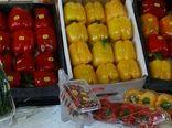 استان اصفهان صاحب رتبه اول صادرات محصولات گلخانهای در کشور