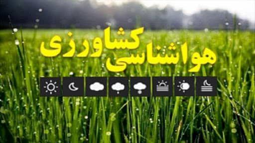 شرایط جوی استان برای سمپاشی آفات در باغها و مزارع مساعد است