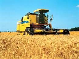 حدود ۲۸۰ هزار تن گندم در استان اصفهان تولید میشود
