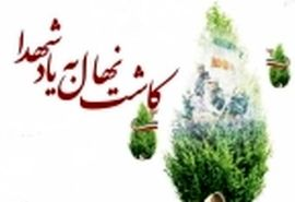 کاشت بیش از 9 هزار نهال در راستای تکریم شهدا و جانبازان چهارمحال و بختیاری