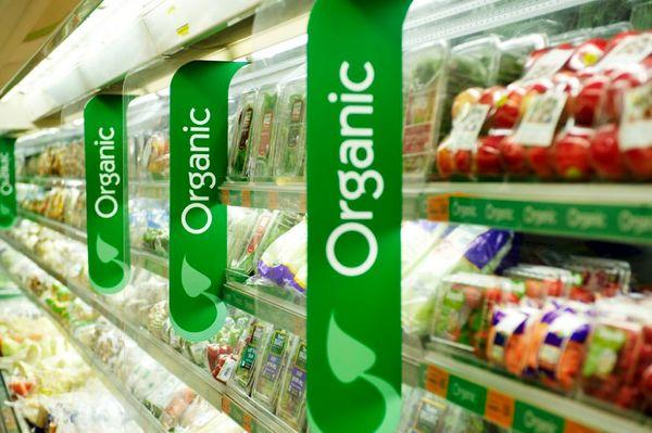 صادرات 43 میلیون دلاری محصولات ارگانیک ایران