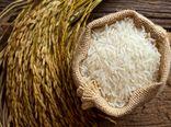 آغازخرید توافقی برنج از کشاورزان مازندرانی