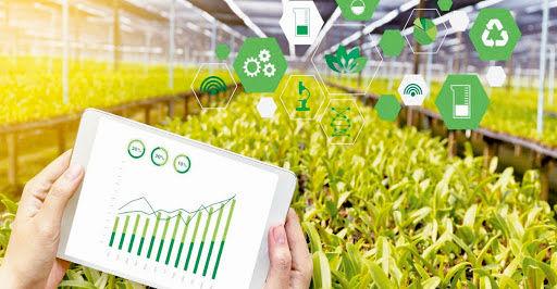 امروزه کشاورزی دانش بنیان حرف اول را در اقتصاد و بهره وری بخش کشاورزی می زند