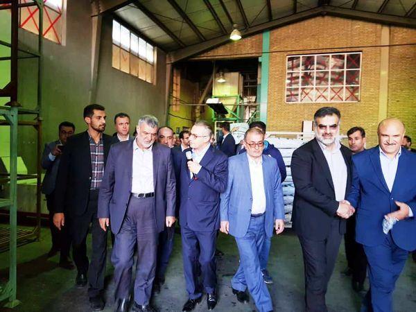 وزیر جهاد کشاورزی از یک شرکت تعاونی خوراک دام در سپیدان بازدید کرد