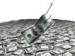 میز مطالعات اقتصادی اجتماعی آبزیان تشکیل میشود/درخواست ردیف بودجه برای فانوس ماهیان