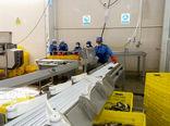 تامین 40 درصد خوارک آبزیان کشور در چهارمحال و بختیاری