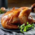 تلاش برای تغییر الگوی مصرف مرغ گوشتی سایز در کشور/ صرفهجویی یک میلیارد دُزی واکسن با تولید مرغ سایز