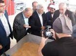 حضور رئیس سازمان جهادکشاورزی خراسان رضوی در شهرستان بجستان
