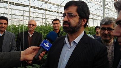 بزرگترین مجتمع گلخانه ای کشور در استان اردبیل در دست اجراست